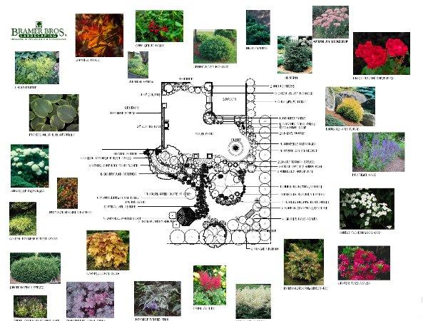 design-layout4