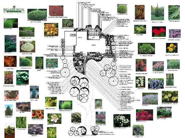design-layout1
