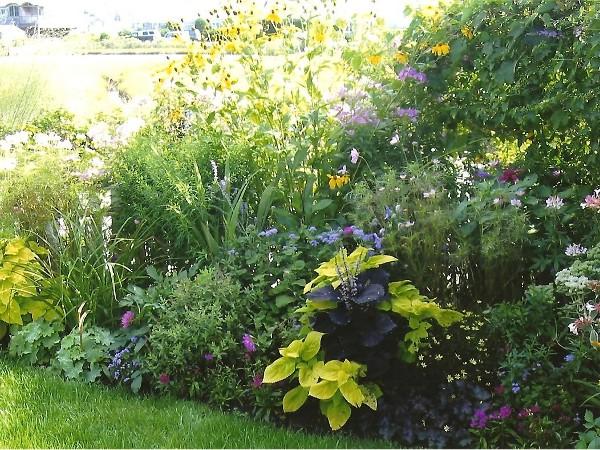 Butterfly garden detail